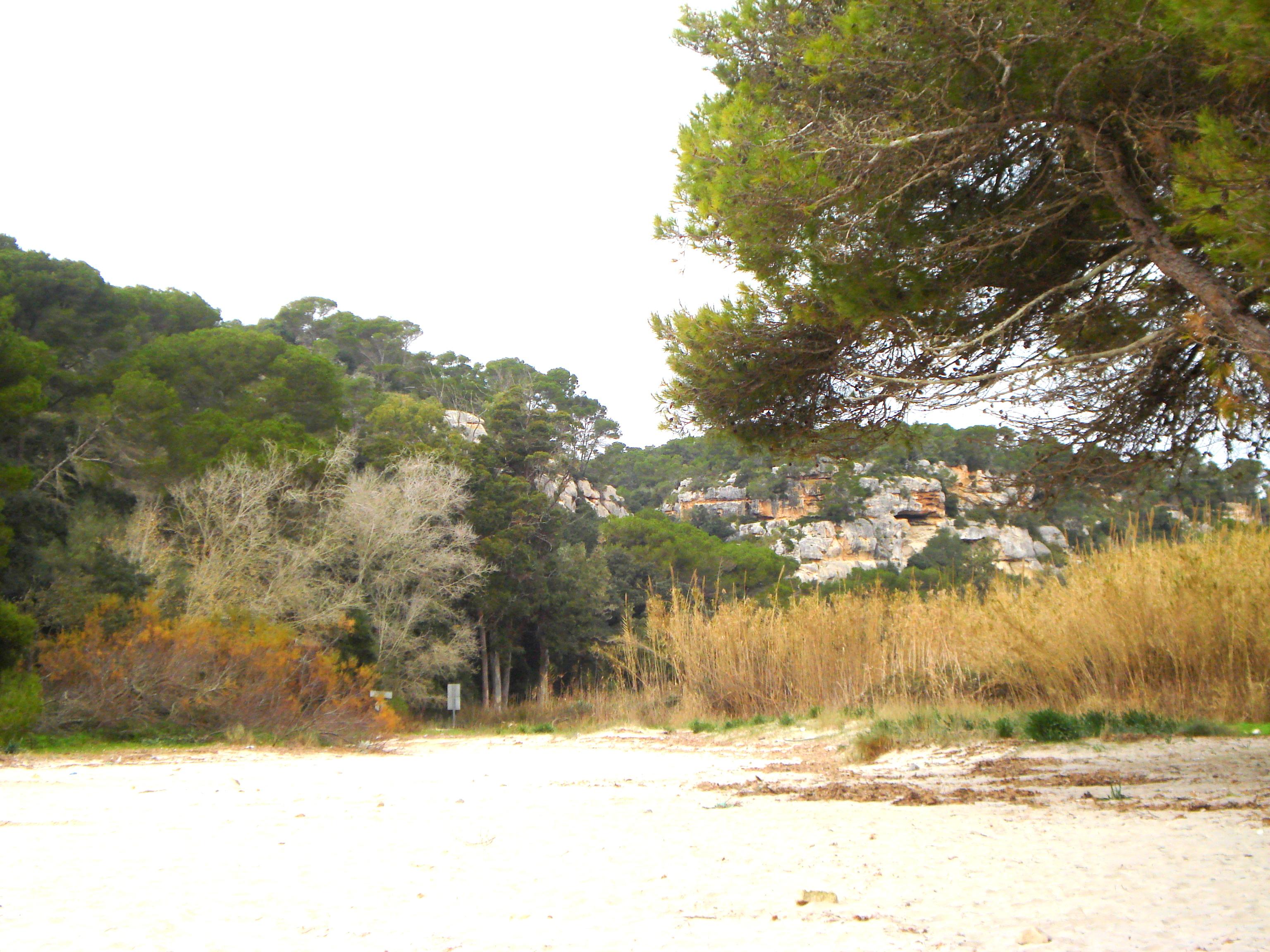 Macarella Menorca